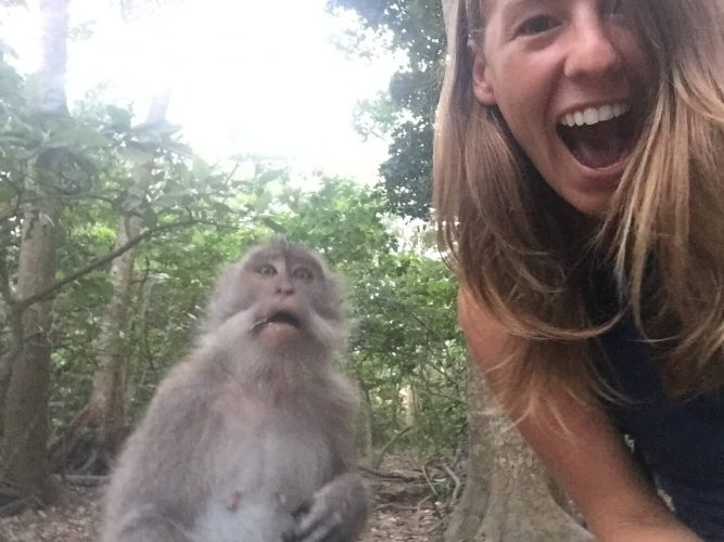 Surprised Monkey Selfie
