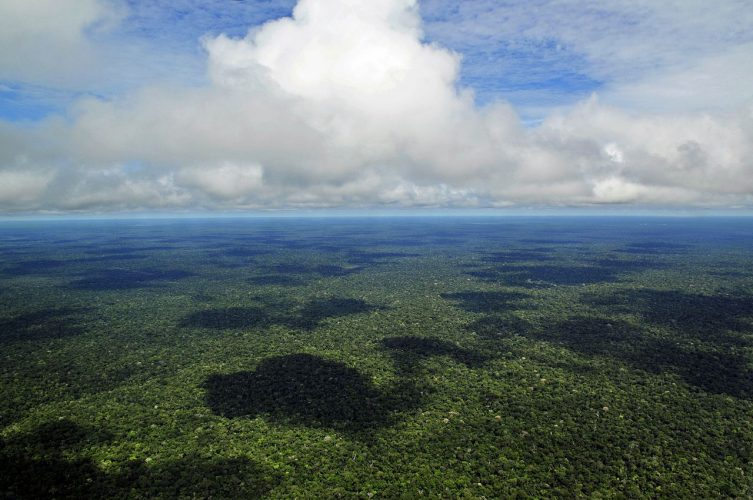 Amazon Rainforest - Biggest Rainforests
